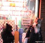 Werewolf Wednsday! 01