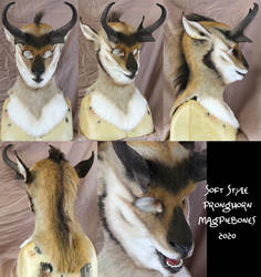 Pronghorn Soft Mask