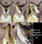 Pronghorn Soft Mask