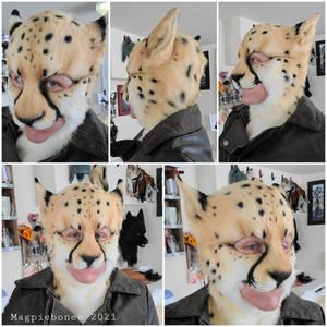 Cheetah Head and Tail Set