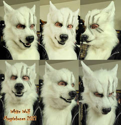 Scarred White Wolf! by Magpieb0nes