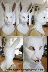 White Rabbit by Magpieb0nes