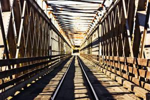 Taramakau Road and Rail Bridge by Mikelyjohnsono
