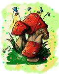 Cogumelos Fresco