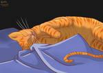 COMMISSION, cat