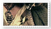 Barbossa Stamp 01 by Chanjar1