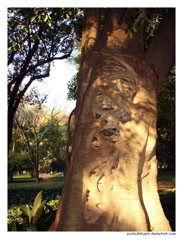 Weird Tree by punksafetypin