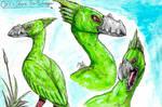 Green Dream Bird of the Sea