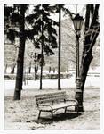 Winter in park 2
