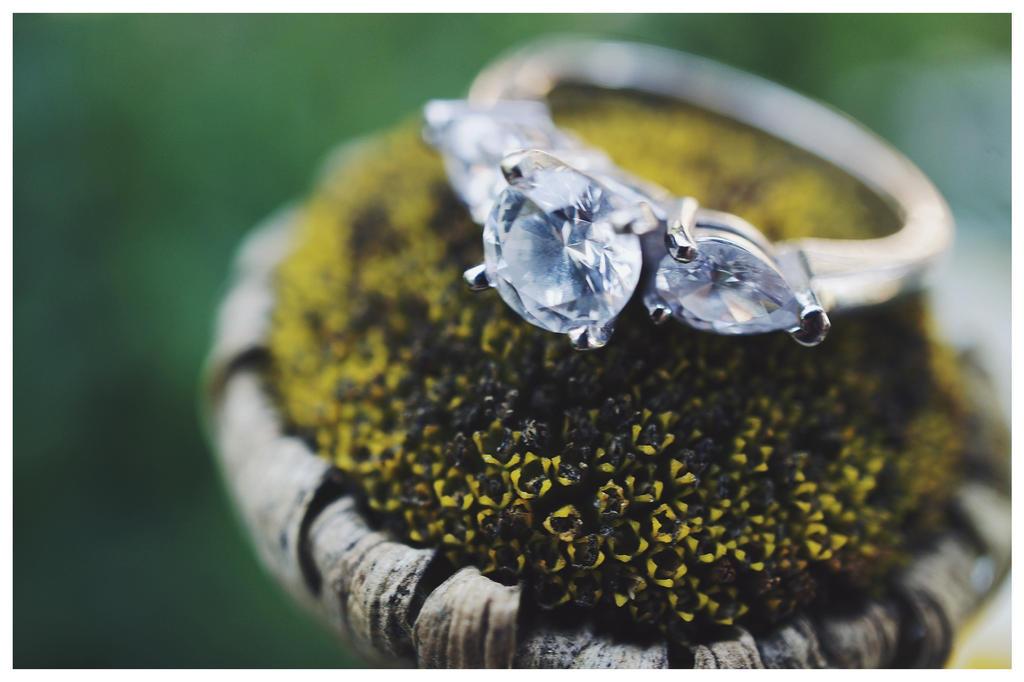 Engagement9