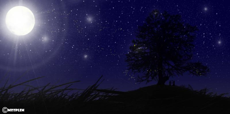 Beneath The Night Sky by missplem