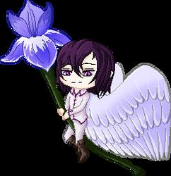 Iris - the messenger bringing good news