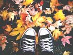 Fall Came