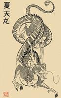 Vector Dragon by kookybat