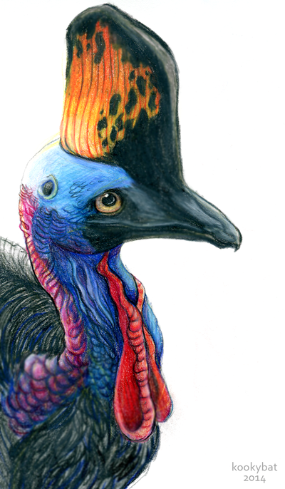 Prismacolor Cassowary by kookybat