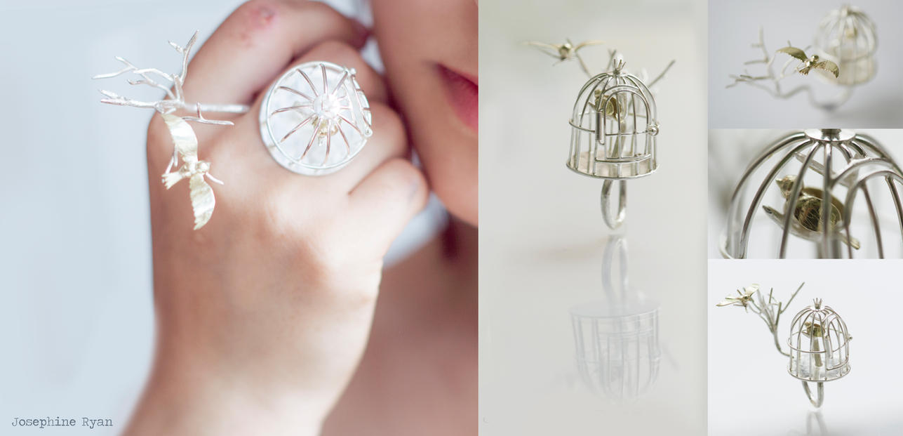 Birdcage Ring by MirielDesign