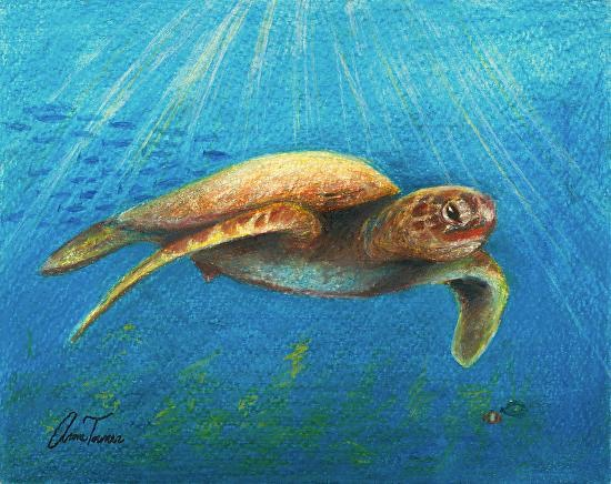 Sea turtle drawing by MistyCascade