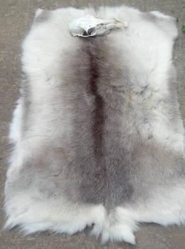 Caribou Backskin Blanket - SOLD