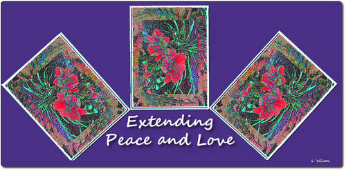 Extending Peace and Love
