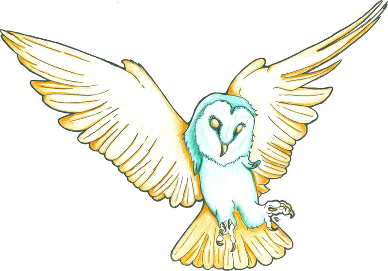 Owl by Adrolien
