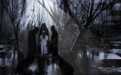Shudder by CatsEye-Photography