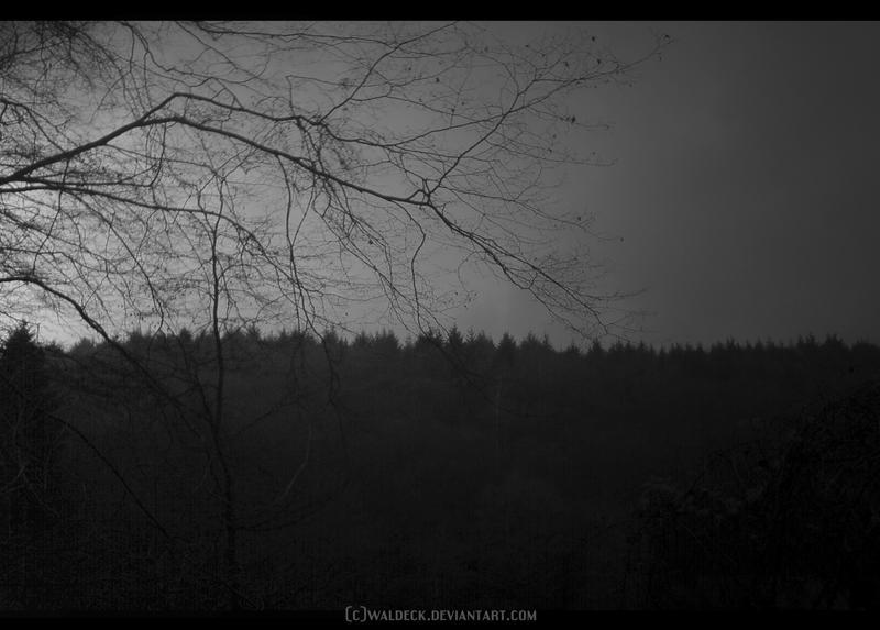 Wood Spirit by Waldeck