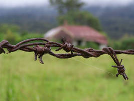 Barbed Wire by this-and-that-stock