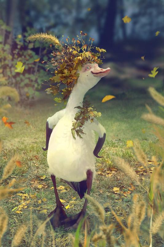 Mr Goose by Svezhaya