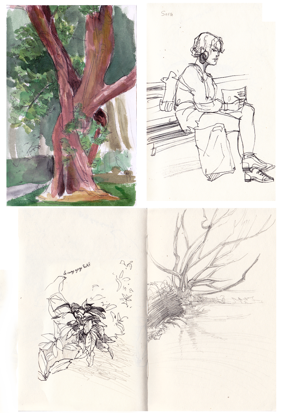 La tanière de Khalizya - Page 2 Jardin_des_plantes_by_khalizya-d5xxd3l