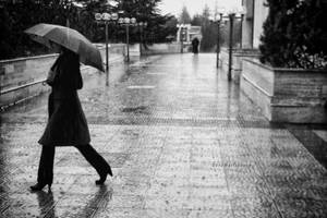 rainfall by pigarot