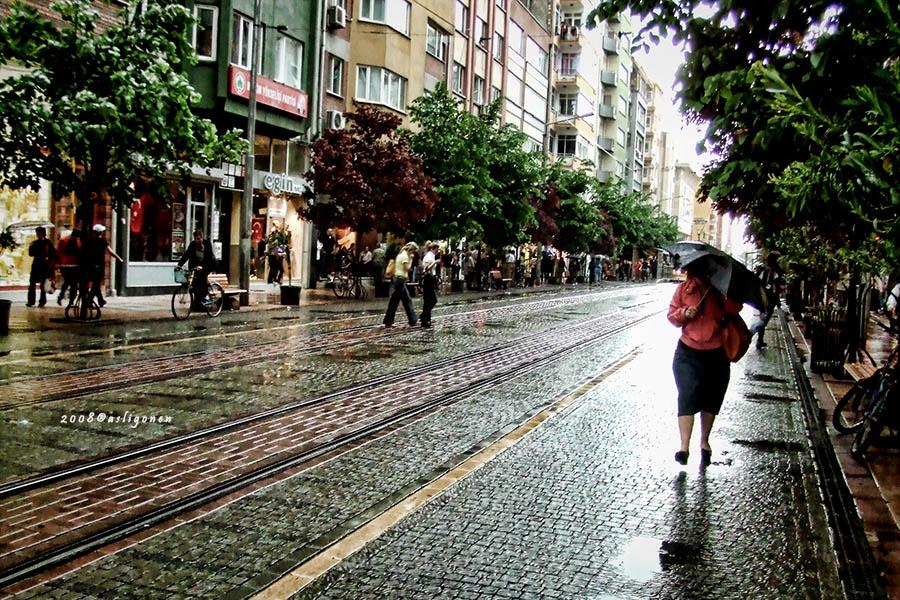 Rainy by pigarot