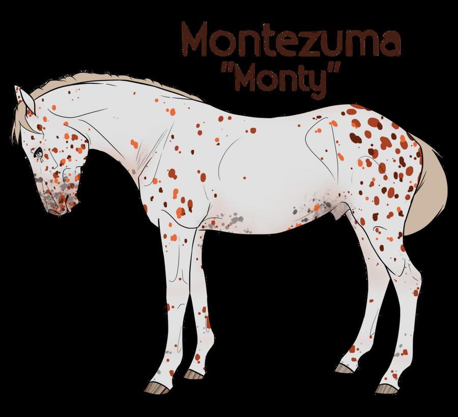montezuma chatrooms Per leggere la guida su come creare e gestire un tuo blog personale gratuito in maniera semplice andate qua e' facile, devi solo eseguire la guida e aprire un tuo blog.