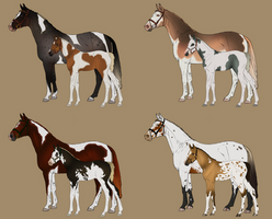 mare and foal sale (1 MARE AVAILABLE) by Lavendonts