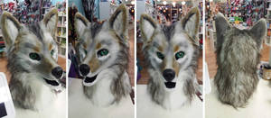Eastern Coyote WIP + AUCTION