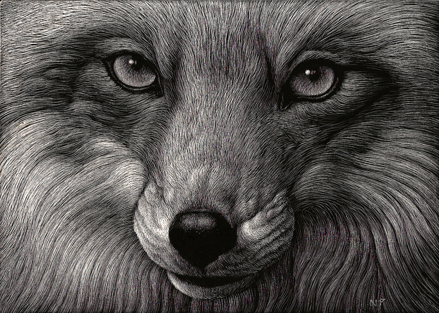 Fox Eyes by nathanperry