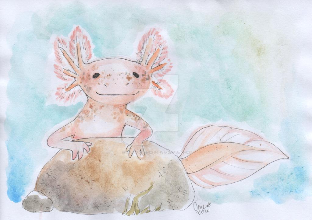 Axolotl by MustLoveOme