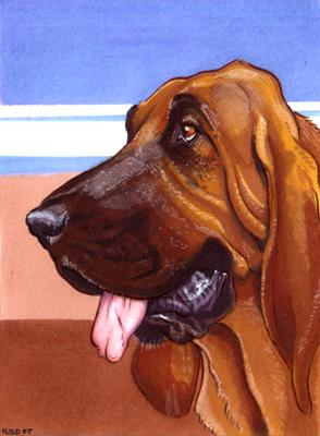 Bloodhound by Ahkahna