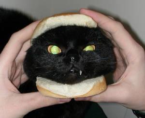 Squeaky Burger