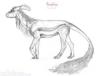 NuraGua Female by Ahkahna