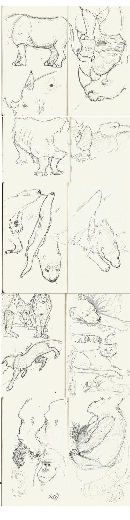 Zoo Pages 2 by Skybird16