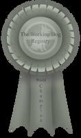 World Champion Ribbon by BV-Academy