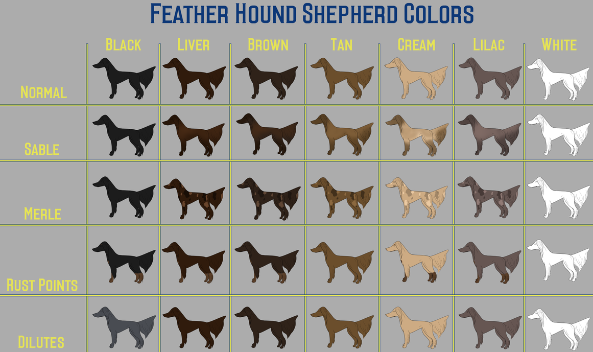 Feather Hound Shepherd Color Chart by Sommer-Studios