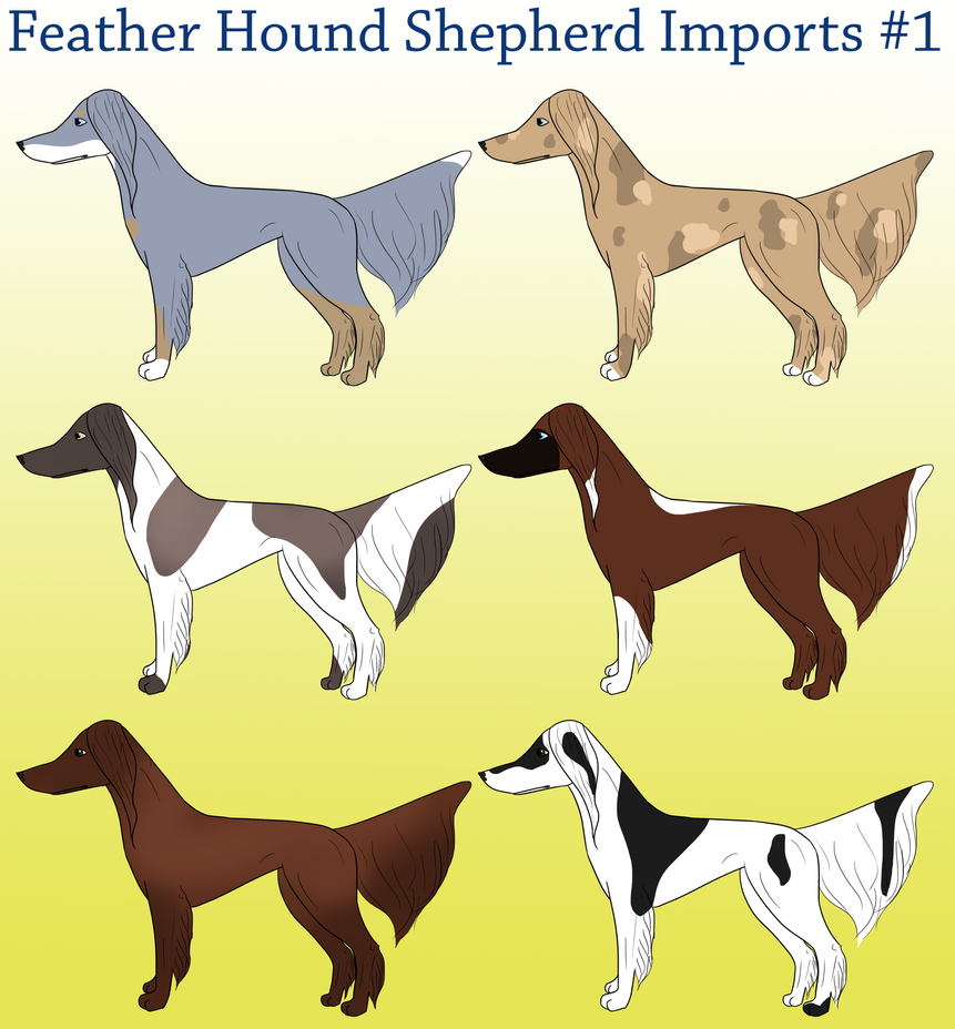 Feathered Hound Shepherd Imports by Sommer-Studios