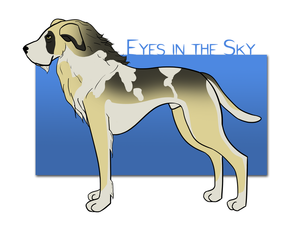 Eyes in the Sky von Red Wing by Sommer-Studios