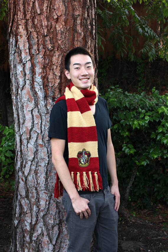 Gryffindor Scarf by lavvy88