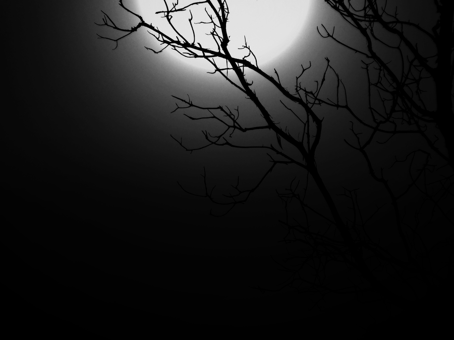 Into The Darkness by Oyn