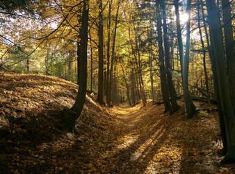 Idyllic Trail by PtarmiganMan