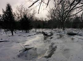 Shiny Ice by PtarmiganMan