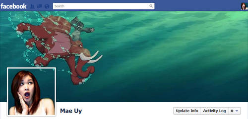 Facebook Timeline Cover - Terk and Tantor