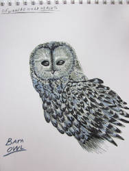 Owl with markers (achromatic) by Teke45